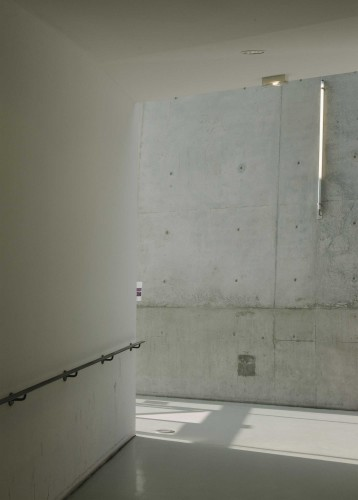 Anticamera Iguane Paris Building 21