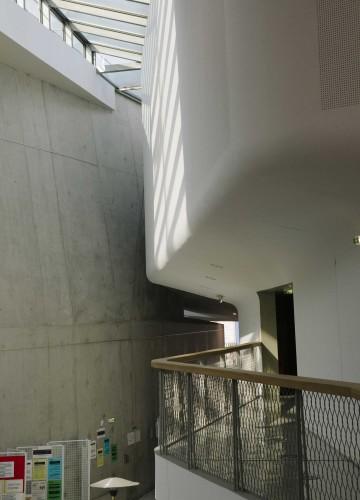 Anticamera Iguane Paris Building 23